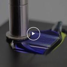 Swans MIT Lens